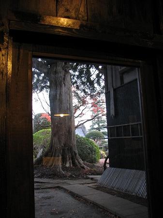 蕎麦茶屋 かやの木