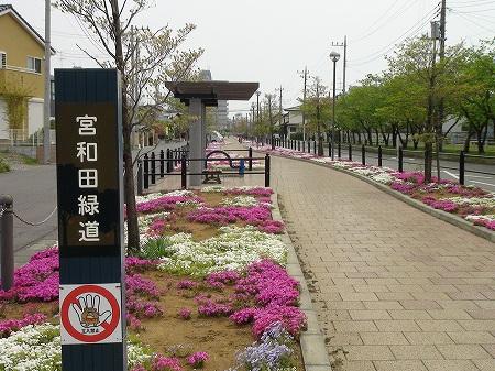 宮和田緑道