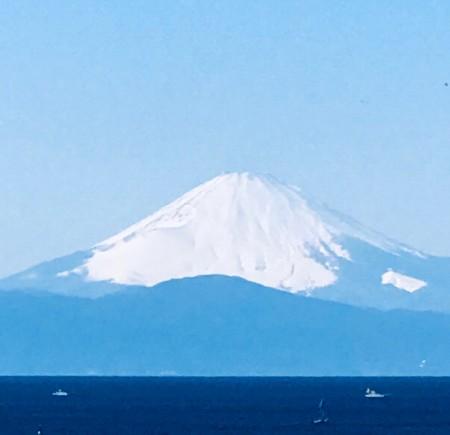 20200209松輪 城ケ島 三崎 🌸_200209_0023