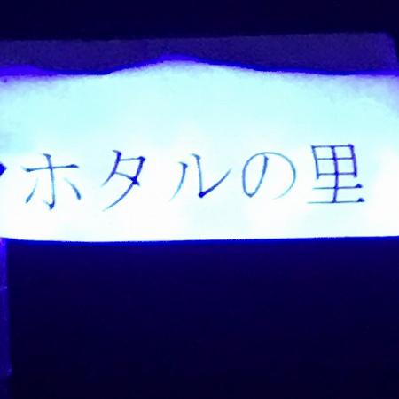 20200629宮ノ前ヘイケボタル (2)